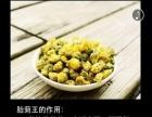 又木红枣黑糖姜茶 女性日常保养饮用佳品