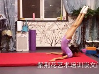 崇文门 双井 少儿舞蹈培训 芭蕾舞蹈 特长生 基本功提高