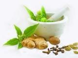 姜辣素高含量10% 生姜提取物 生姜粉 质优价廉 欢迎选购
