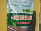 滨州硅藻泥技术培训 山东硅藻泥厂家