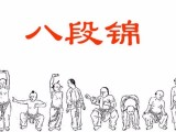 中山健身气功 八段锦 五禽戏 易筋经养生系统健身
