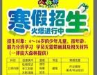 宏路小学写作 寒假培训班 380元 限30名