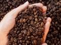 新陸咖啡 新陸咖啡诚邀加盟