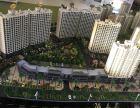 菠萝的海长寿之乡抗癌富硒土壤高端国企大盘数量有限安粮蓝海城市广场