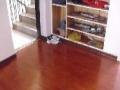 地板维修,福州地板变形维修,泡水维修,吊顶维修