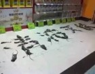 酒店灭鼠除虫 超市灭鼠灭蟑螂 工厂灭鼠灭四害 清波专业20年