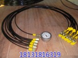 河北衡水超高压软管 树脂管 油压管 高压测试管
