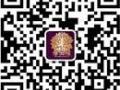 淄博最专业的瑜伽会所