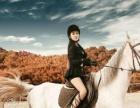 马术体验体验课程、交通方便 骑马培训 双十二特惠