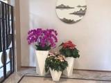 鮮花活動布置花藝布置開業喬遷花籃羅馬柱花藝