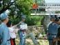 泉州六一活动录像、现场直播、制作、宣传片拍摄