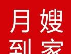 唐山催乳 专业月嫂 专业催乳