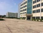 佛山市南海区里水甘蕉工业区楼上1700平方米全新厂房 出租