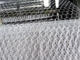 环标河道治理石笼网 石笼网厂家 河道治理石笼网哪家好