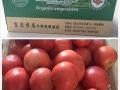 富京有机蔬菜 国家财政部专供 蔬菜宅配卡 蔬菜礼盒