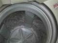 9新 TCL XQB50-51SZ全自动洗衣机