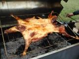 承包上门烤全羊烤鳄鱼烤串等,暖场烧烤外包,公司聚餐烧烤