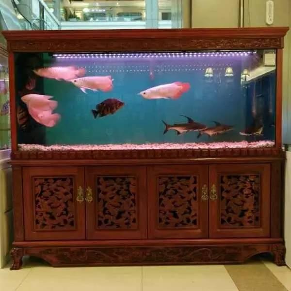 鱼缸漏水专业维修 鱼缸电路维修 鱼缸照明维修