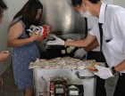 上海宝山区哪里有宠物火葬的地方宝山区动物殡葬电话上门服务接送