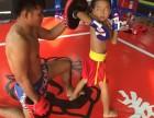北联盟拳馆 :免费体验,专业泰拳,泰国教练教学