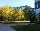 常营 非中心商务花园 写字楼 375平米