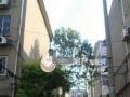 中山东路(三五九医院)隔壁6楼100平二室二厅中装空2台设全