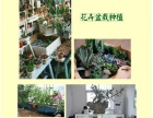 园艺花卉有机肥 楼顶阳台轻质营养土楼顶花园设计施工