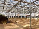 山东潍坊鲁源温室温室大棚骨架厂家热销水产养殖塑料薄膜温室大棚