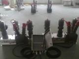 户外10KV高压双电源互投装置ZWA