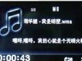 九成新纽曼MP5 (4G)低价转让听歌小视频必备