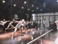 零基础初中高级全日制教练培训班包考证包住宿专业舞蹈技能培训