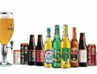 珠江啤酒招经销商