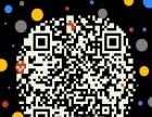 滴客(中国)车联网平台+网约车+货的+大数据