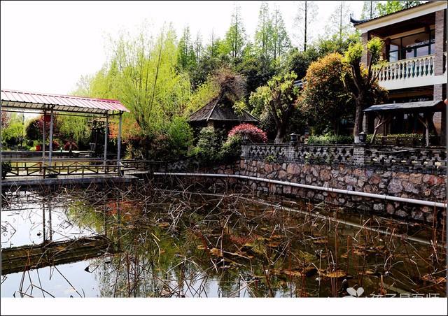 南京农家乐哪里好?青未了生态休闲园 烧烤 团建活动