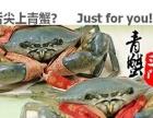 江浙沪一带,出售正宗多膏三门青蟹,自家养殖.