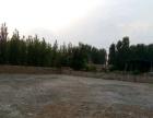 南冶车管所附近 场院出租 1700平米