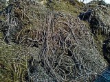 襄陽公司回收鐵屑,鋼銷,鐵銷,鋼屑