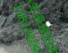 昆山城北废铁回收铁屑废铝废铜回收