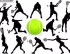 三亚天外天网球培训及陪打 陪练