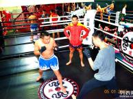 北京散打 跆拳道 泰拳 女子防身术 中小学体能达标培训