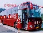台州到潍坊客车台州至潍坊卧铺客车汽车