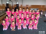 方庄刘家窑成寿寺附近哪有好点的舞蹈培训班民族舞舞蹈考级培训班