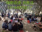 东莞松山湖绿野农庄公司团队环湖骑行+烧烤+康体休闲一日游