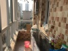 渭南-安信城中园1室1厅-800元