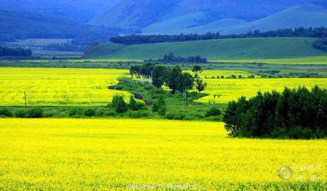 探访牧民生活穿越呼伦贝尔大草原腹地体验这个夏天不一样的旅行
