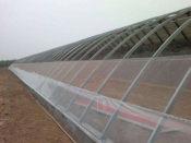 冬暖式温室大棚【温暖送给您】承建冬暖式温室大棚承航景观
