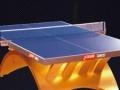 彩虹乒乓球台 金彩虹乒乓球台 济南红双喜乒乓球台