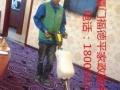 开荒保洁、外墙清洗、地毯清洗、石材养护、厂房保洁