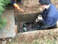 武汉疏通下水道 管道改造 化粪池清污抽污 泥浆外运