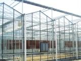 温室养殖大棚建设,光伏蔬菜大棚就选大利农业